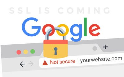 SSL Certificates: Google Warnings For Form Input